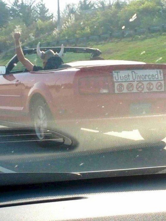 just divorced car guy