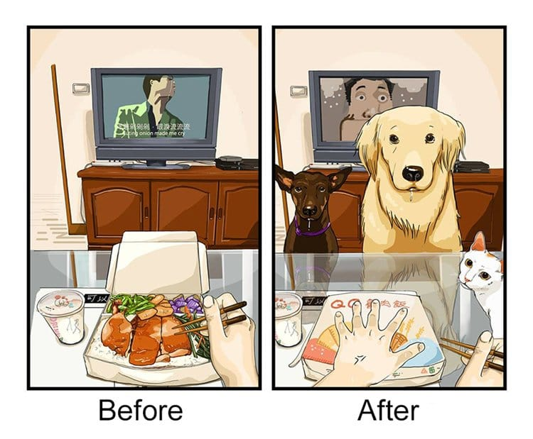 life-before-dog-vs-life-after-dog-food