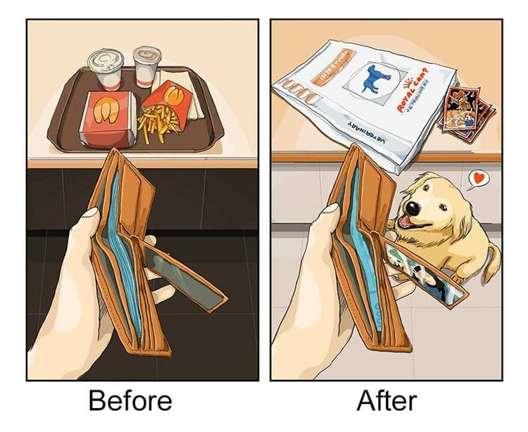 life-before-dog-vs-life-after-dog-money