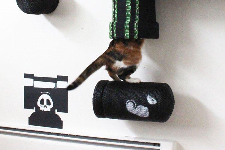 mario-cat-complex-in-tube