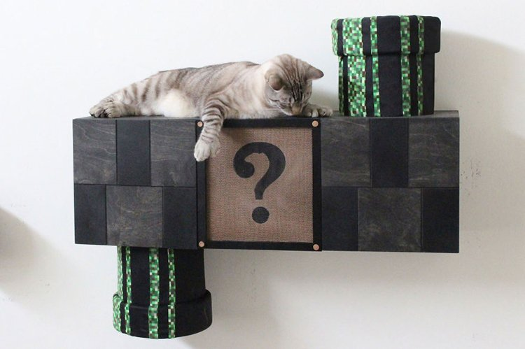 mario-cat-complex-look