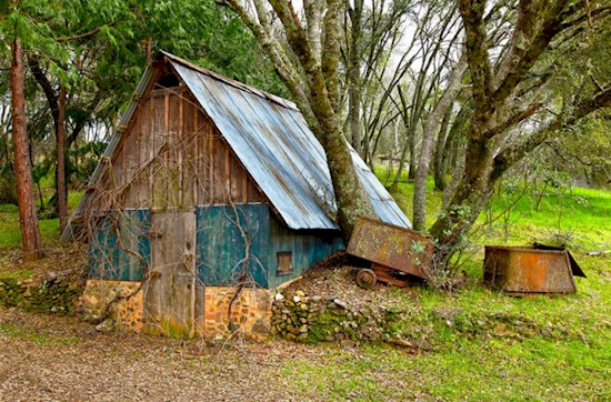 root-cellar-shed