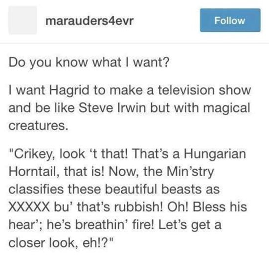 tumblr-harry-potter-hagrid