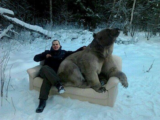 weird-russian-winters-bear