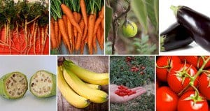 Fruits Vegetables Used To Look