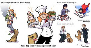 Funny Pictures How See Yourself Dog