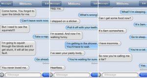 Hilarious Text Cat
