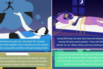 Interesting Facts Sleep