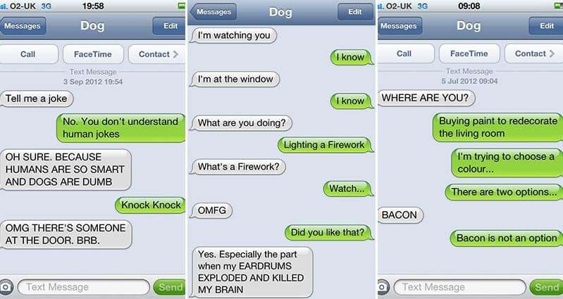 Most Hilarious Texts From Dog