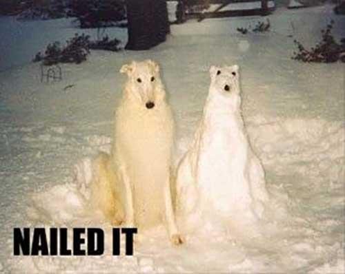 21 Alaska Winter Memes that Hit Close to Home! - The ... |Reddit Snow Meme