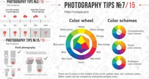 Tips Professional-Looking Photographs