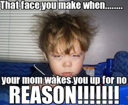 Wakes Up
