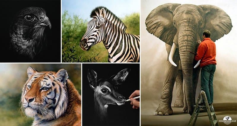 Wildlife Artwork Richard Symonds