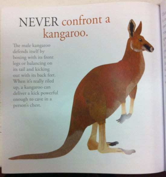 australian-wildlife-never
