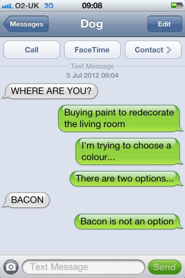 bacon paint