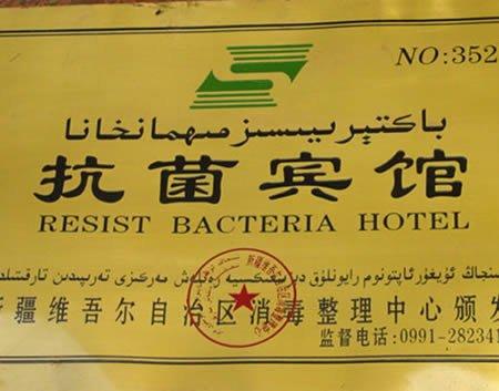 bacteria hotel