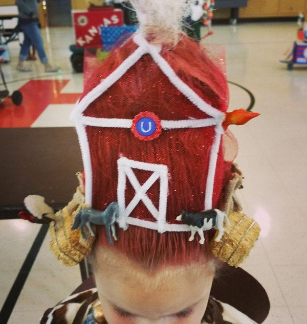 barn hair
