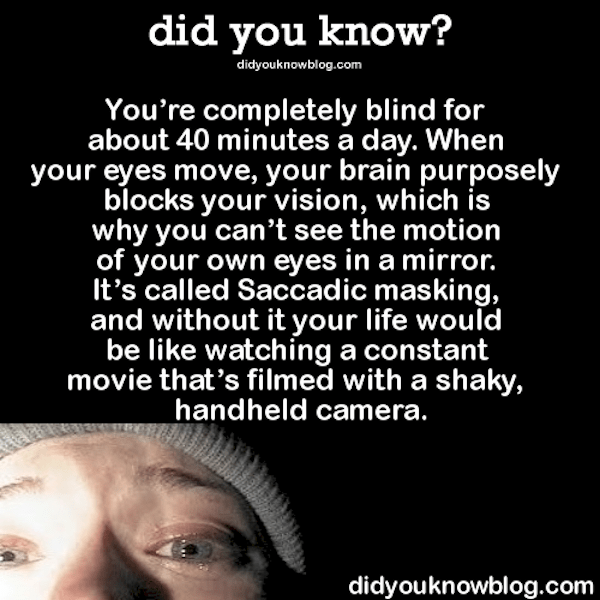 youre completely blind for 40 minutes a day