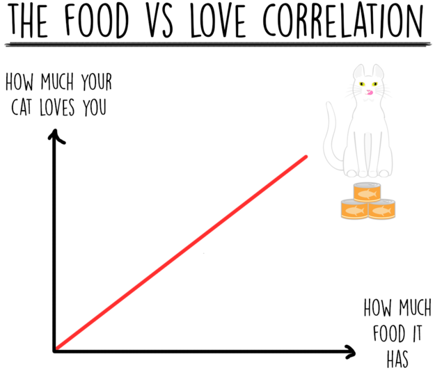 cat-charts-food