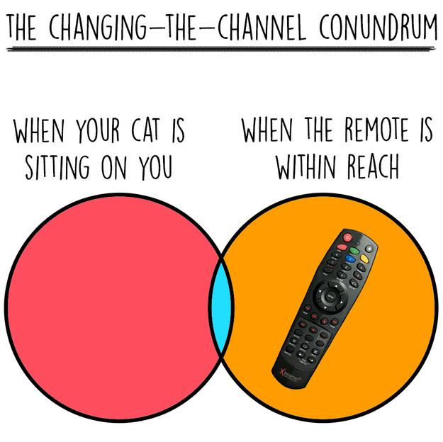 cat-charts-remote