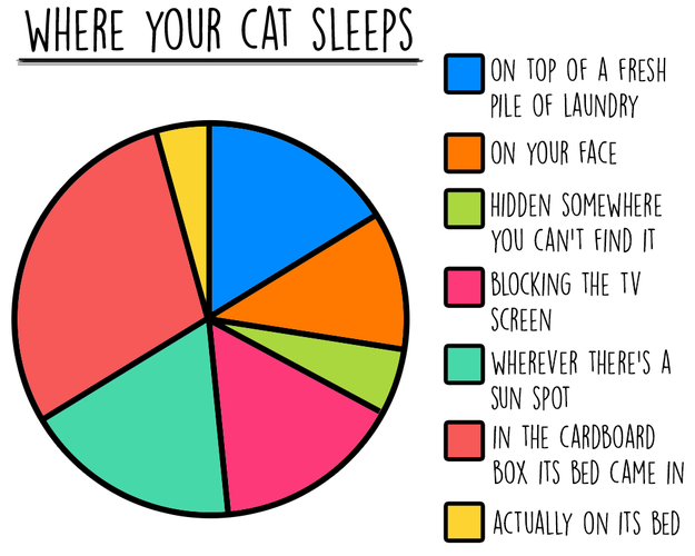 cat-charts-sleep