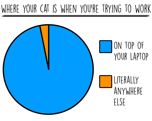cat-charts-work