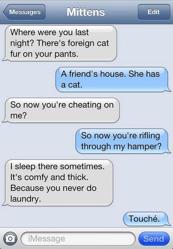 cat fur text