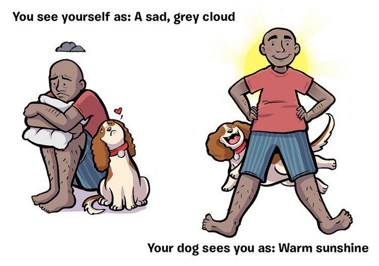 cloud sun dog