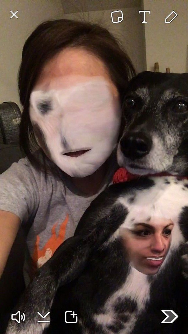 dog girl swap