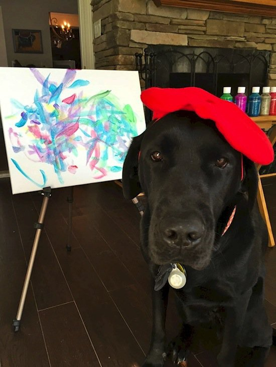 dog-painter