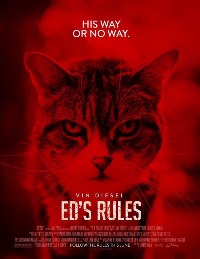 eds rules poster