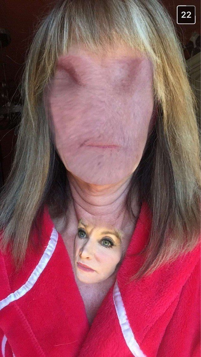 face neck swap