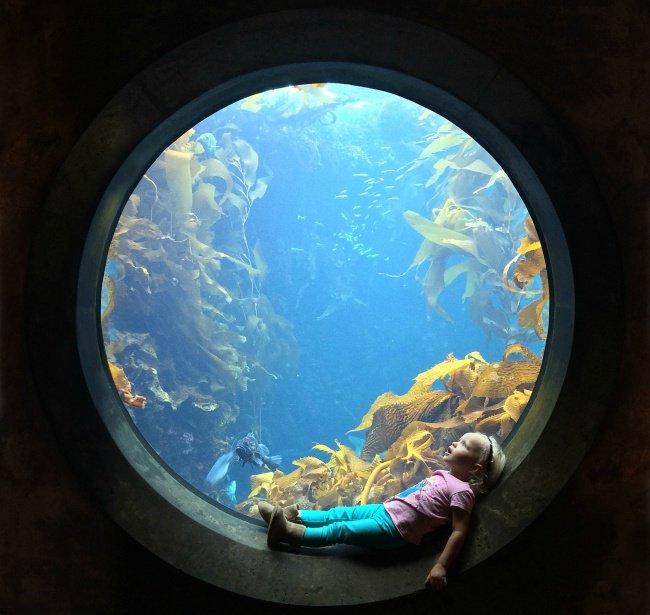 girl aquarium