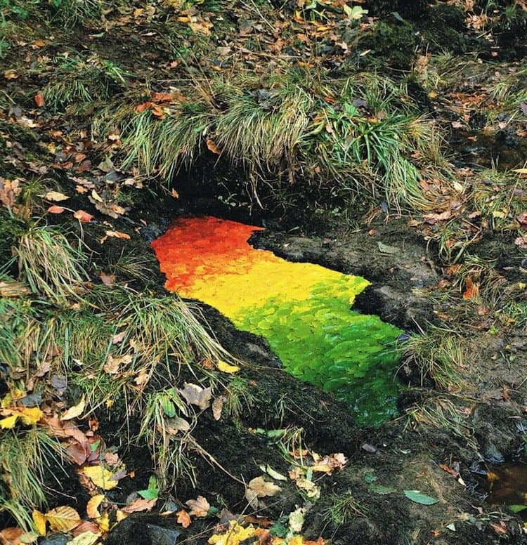 goldsworthy-leaves