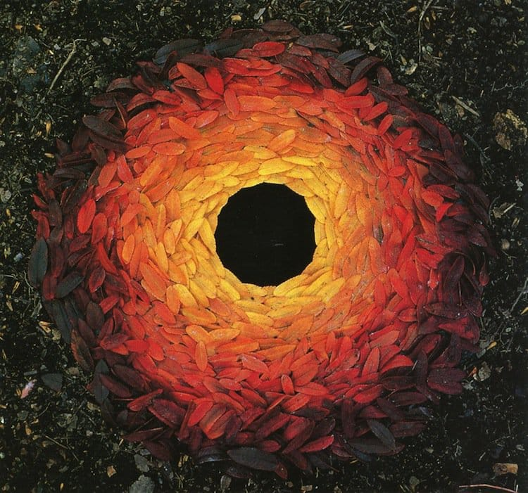 goldsworthy-orange