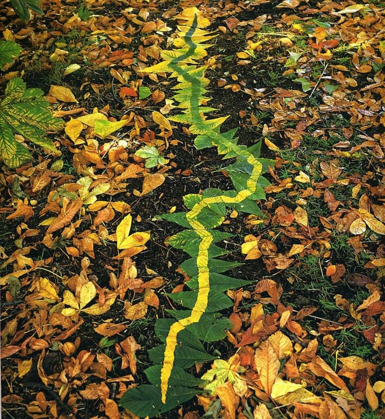 goldsworthy-trail