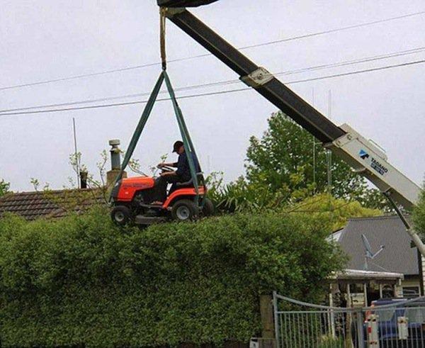 hacks-hedge