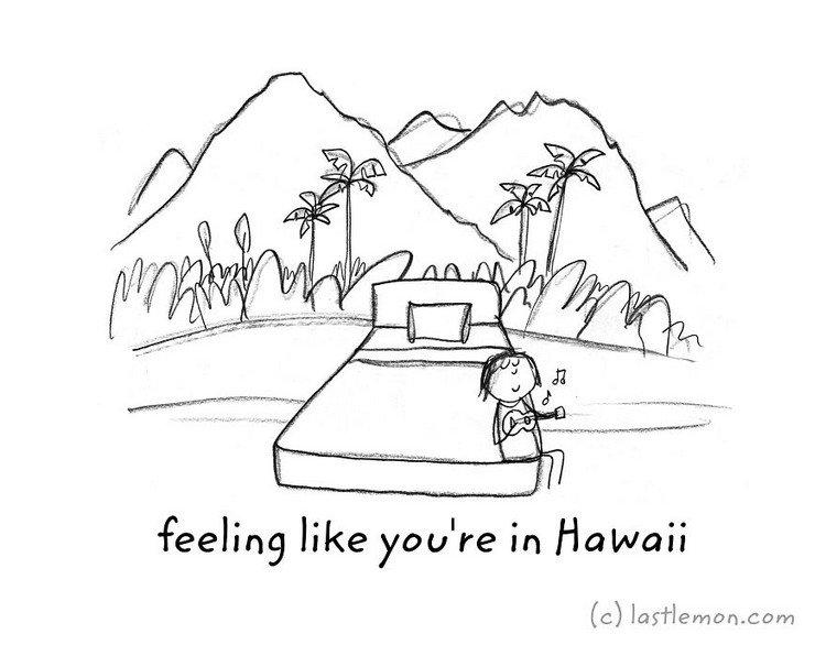 hawaii uke