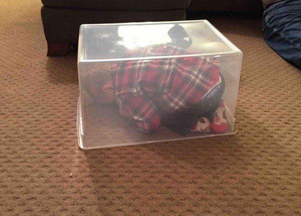 hide box