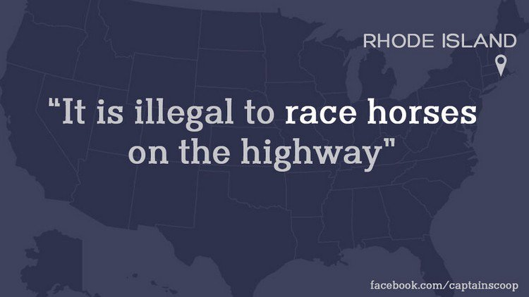 illegal horse law