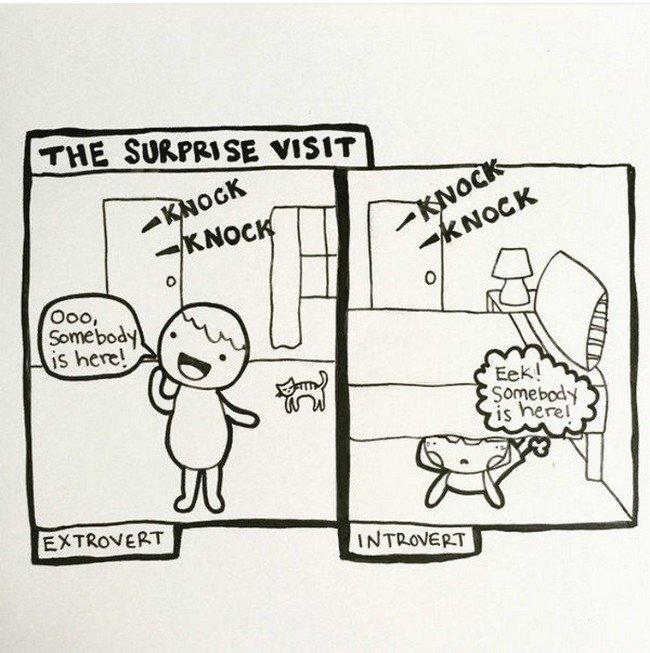 introvert visit