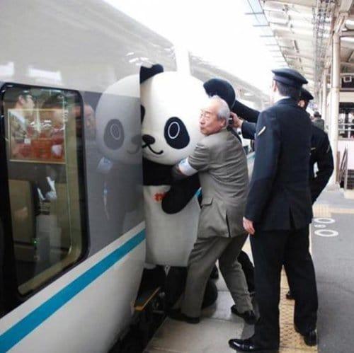 japanese-mascots-stuck-panda