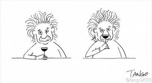 lion einstein