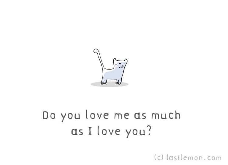 love me cat