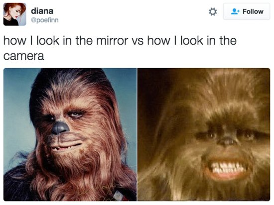 mirror-v-camera-roll-chewie