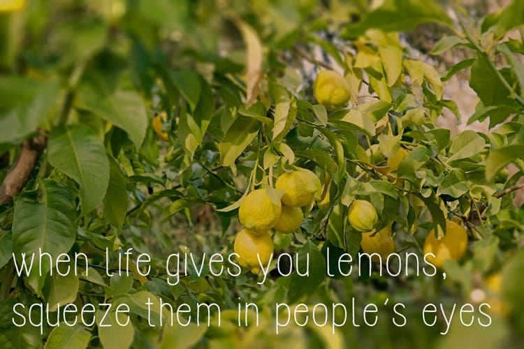 motivational-posters-hate-people-lemons