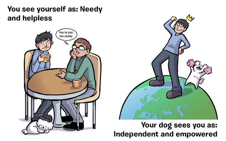 needy empowered dog