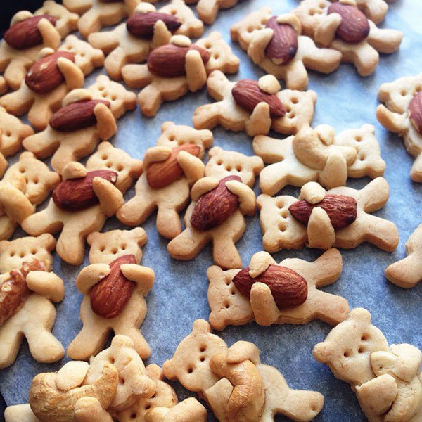 nut bear cookies