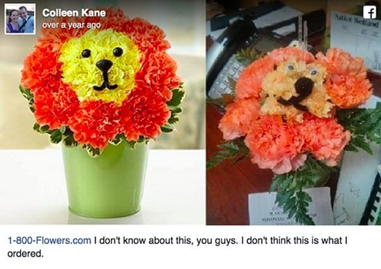 online-shopping-gone-wrong-flowers