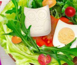 owl boiled egg mold